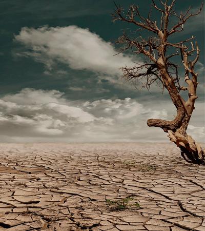 Hace 20 años, hablar de renovables y sostenibilidad era «predicar en el desierto»