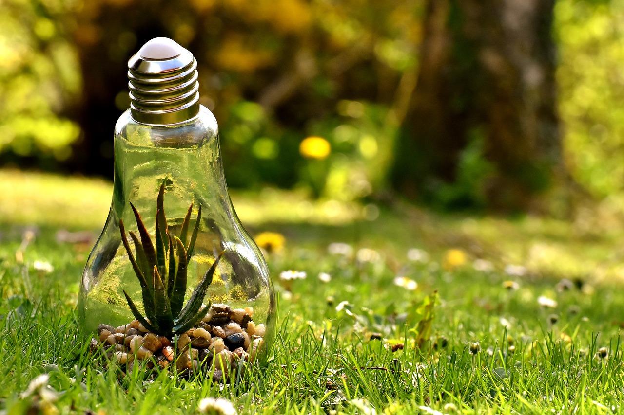 El cambio de modelo energético en marcha